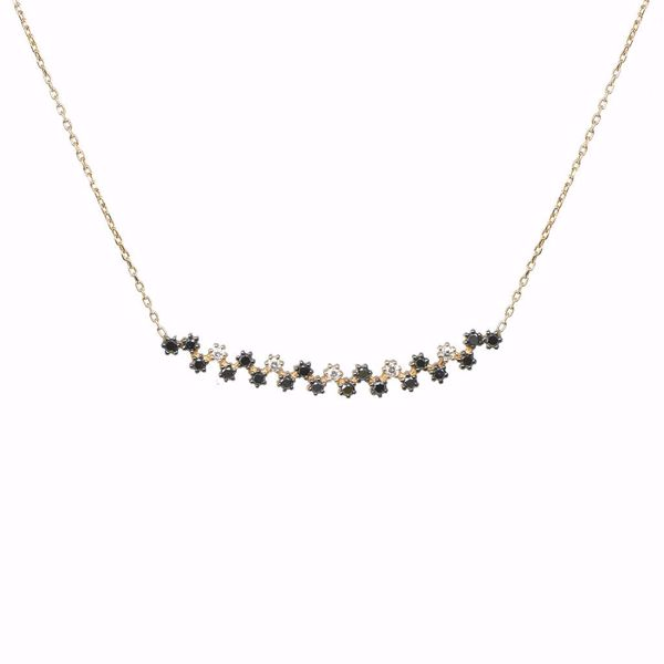 Picture of Special Black & White Diamond Necklace